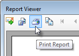 report-viewer-print-report