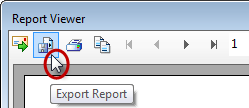 Export Report Button